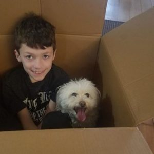 Professional packing, moves, movers, NJ